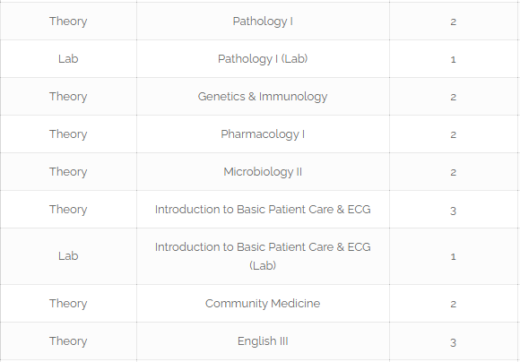 Roadmap To become Pediatric Urologist In Pakistan [Detailed Guide] 4 - Daily Medicos