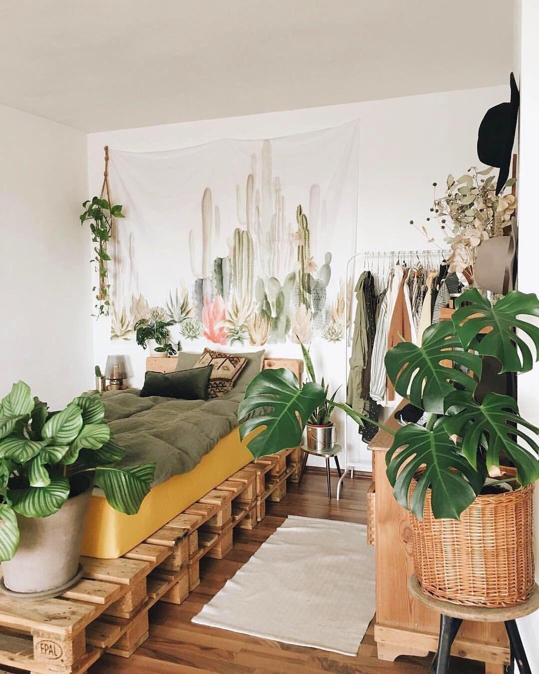 Phòng ngủ nên đặt cây gì 8