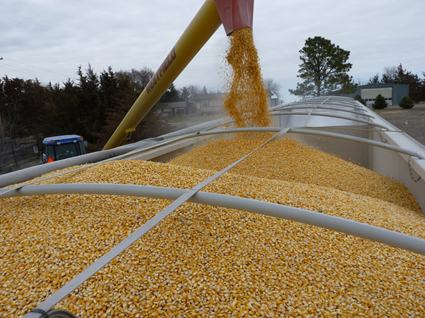Interactuá con la agroindustria en Argentina