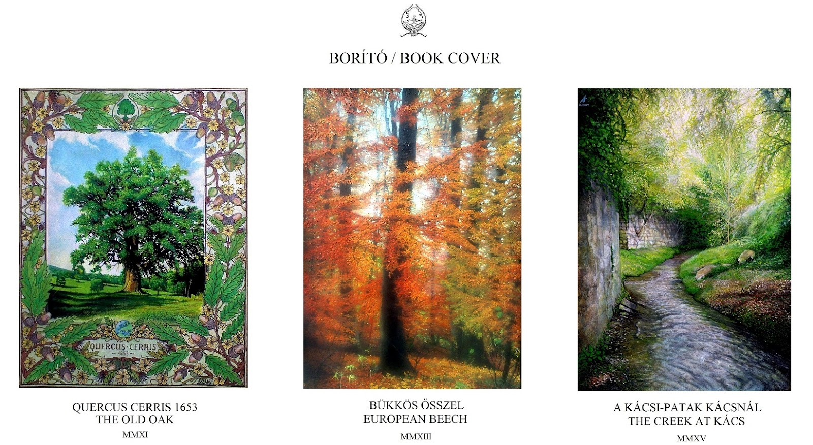 BORÍTÓ I - BOOK COVER I.jpg