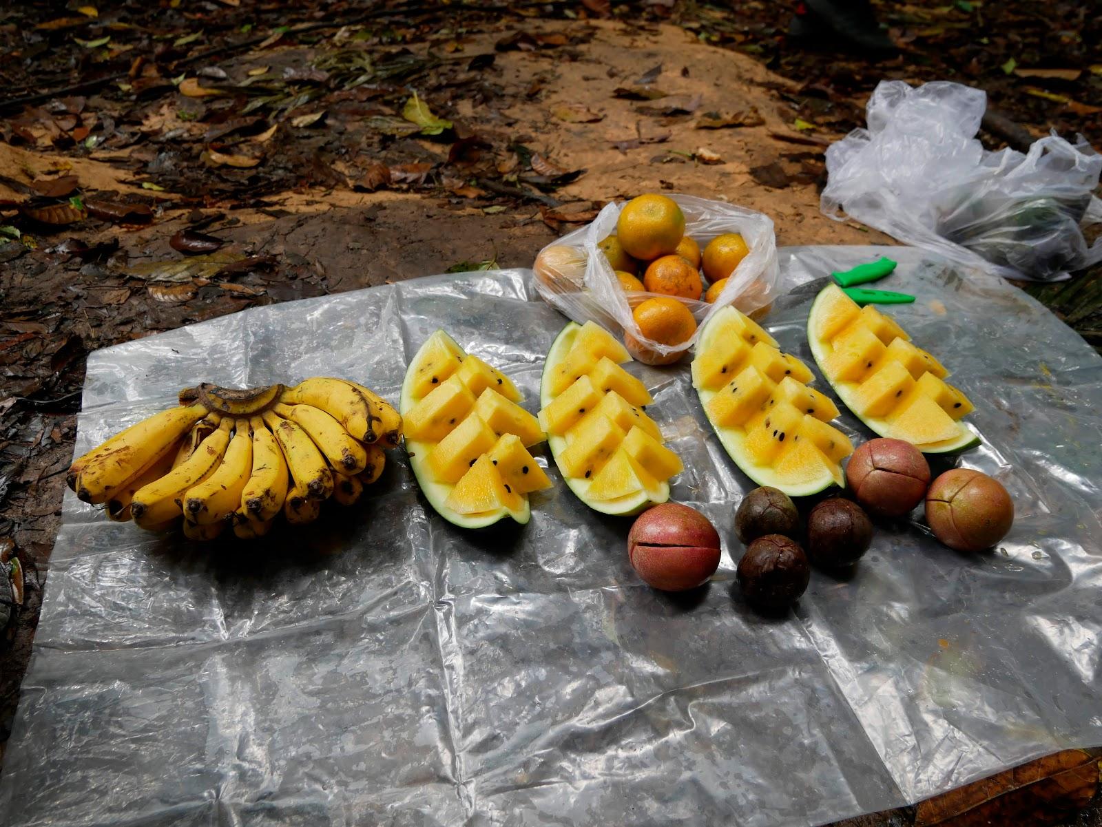 fruta en el trekking de bukit lawang