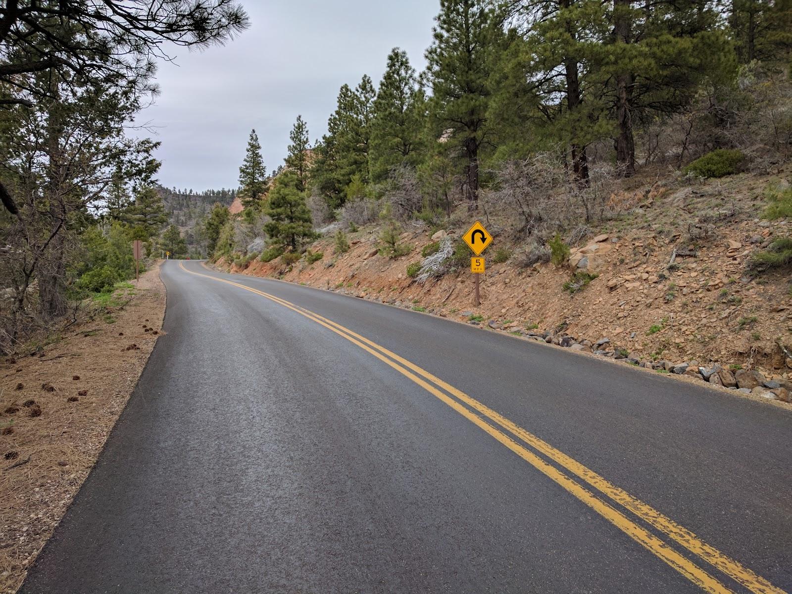 Kolob Terrace bike climb - finish - roadway and forest