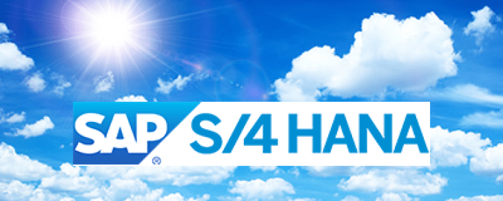 Steps to the future: SAP S/4HANA Cloud journey