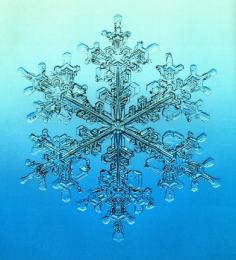 snowflakebl.jpg