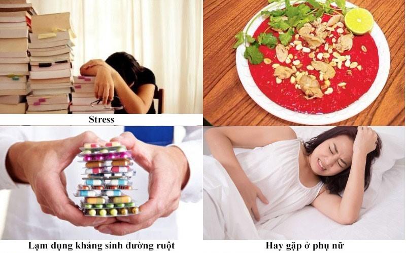 Các nguyên nhân chính gây viêm đại tràng