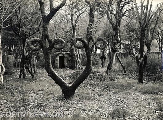 Аксель Эрландсон, создатель «Tree Circus»