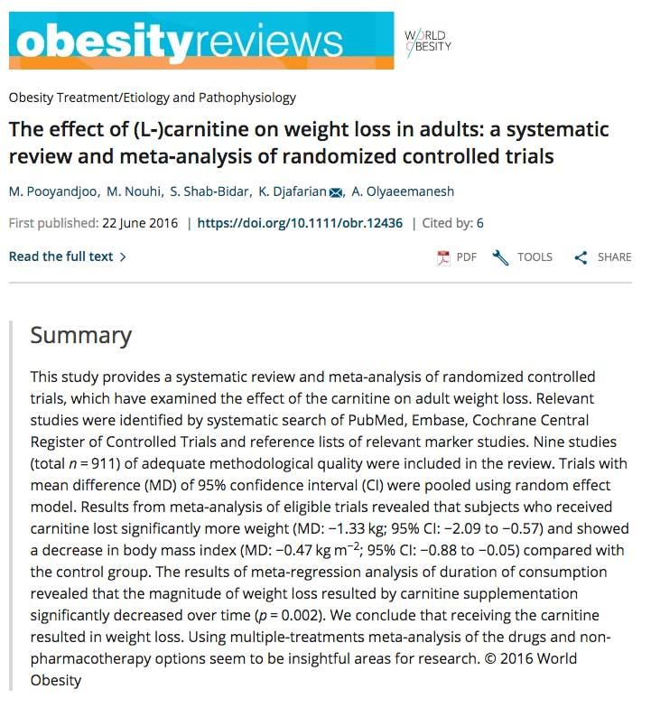 Obesity reviews research paper