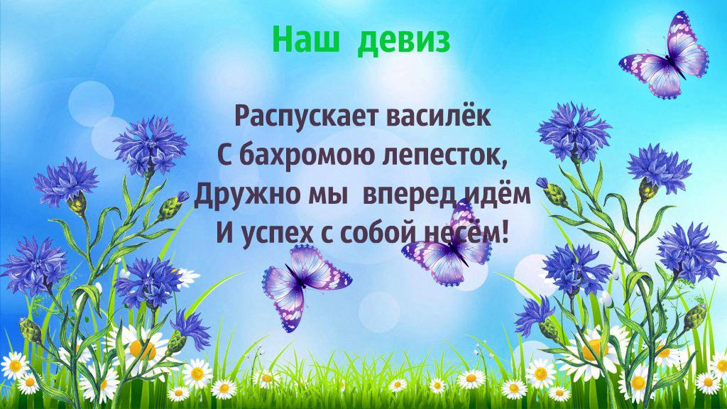 image_image_109841.jpg