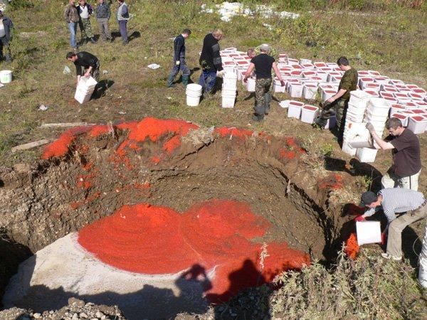 Российские власти уничтожили уже 10,7 тыс. тонн санкционной продукции - Цензор.НЕТ 6000