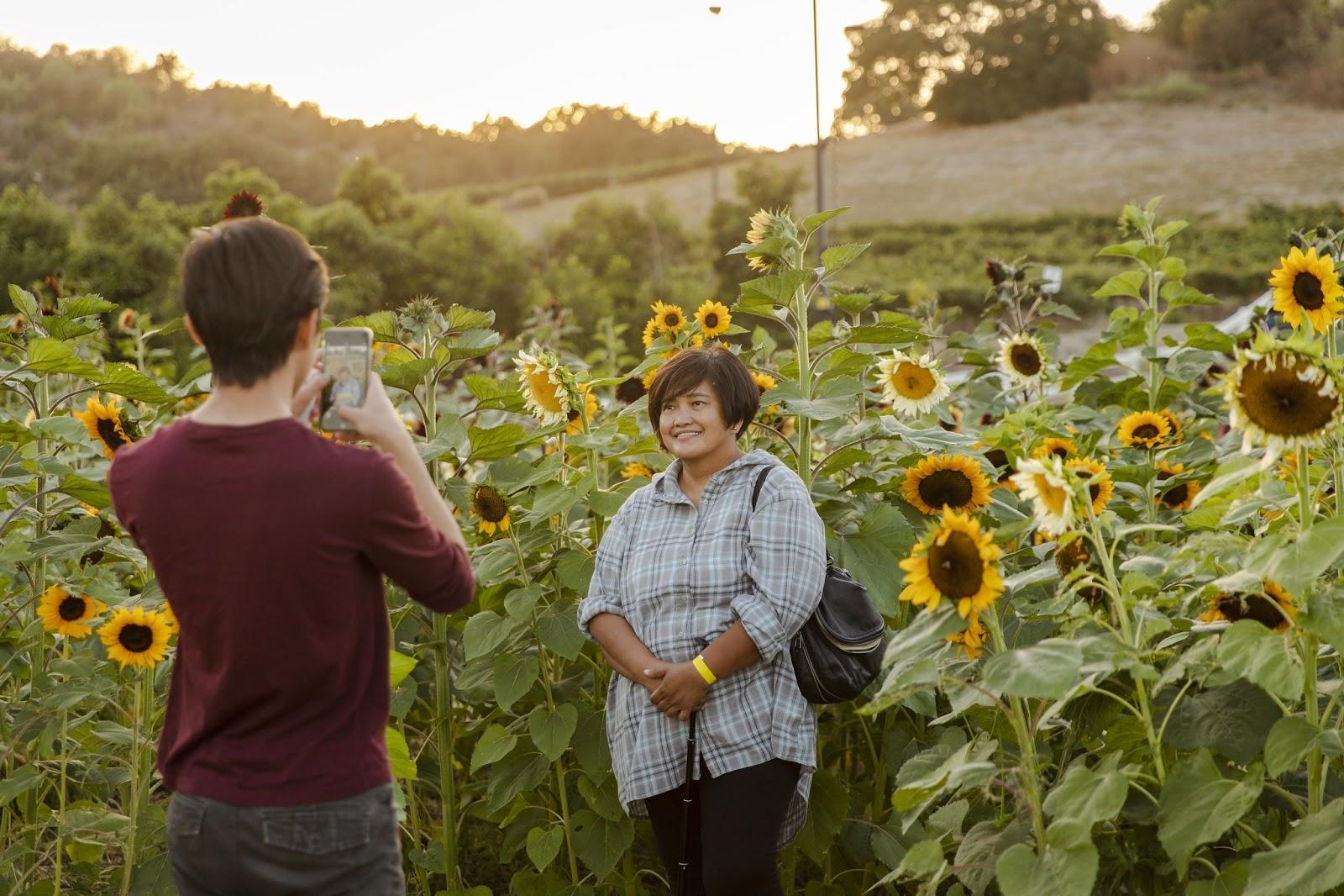 Women posing in sunflower field