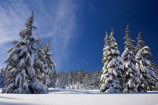 Everything You Can Do in the Haliburton Highlands This Winter