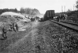 trein naar trobitz