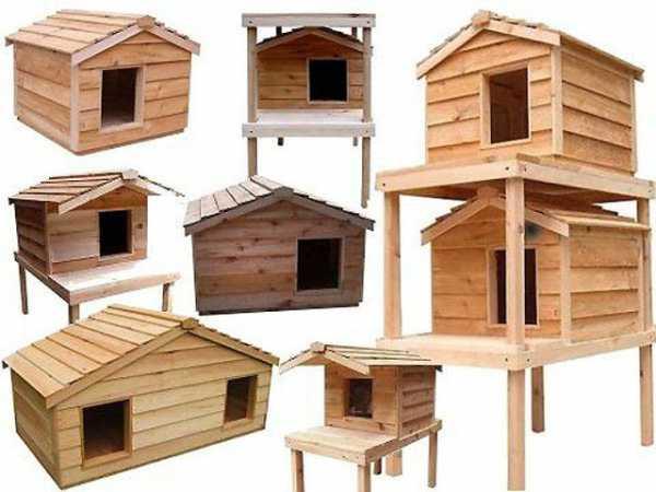 Модели деревянный уличных домов для кошек