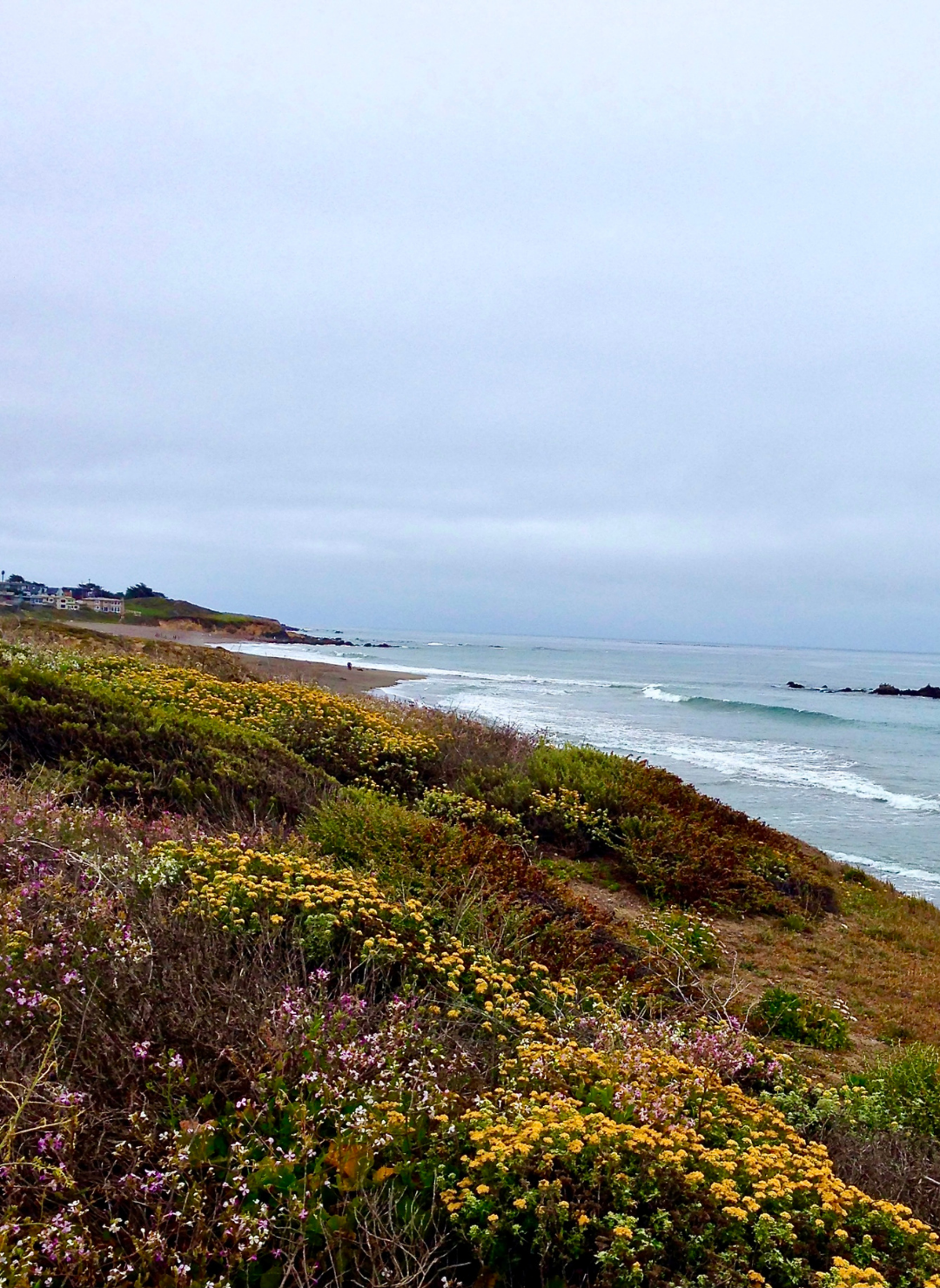 """The Pacific Coast Highway - and the Case for Coastal MaximalismCalifornia's Highway 1, the Pacific Coast Highway, or PCH, is one of the most """"road-tripped"""" highways in the world, and for good reason.."""