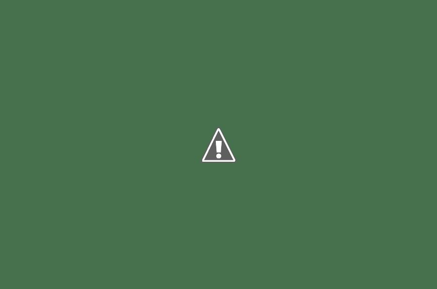 kinh nghiệm du lịch bụi phnom penh - côn trùng