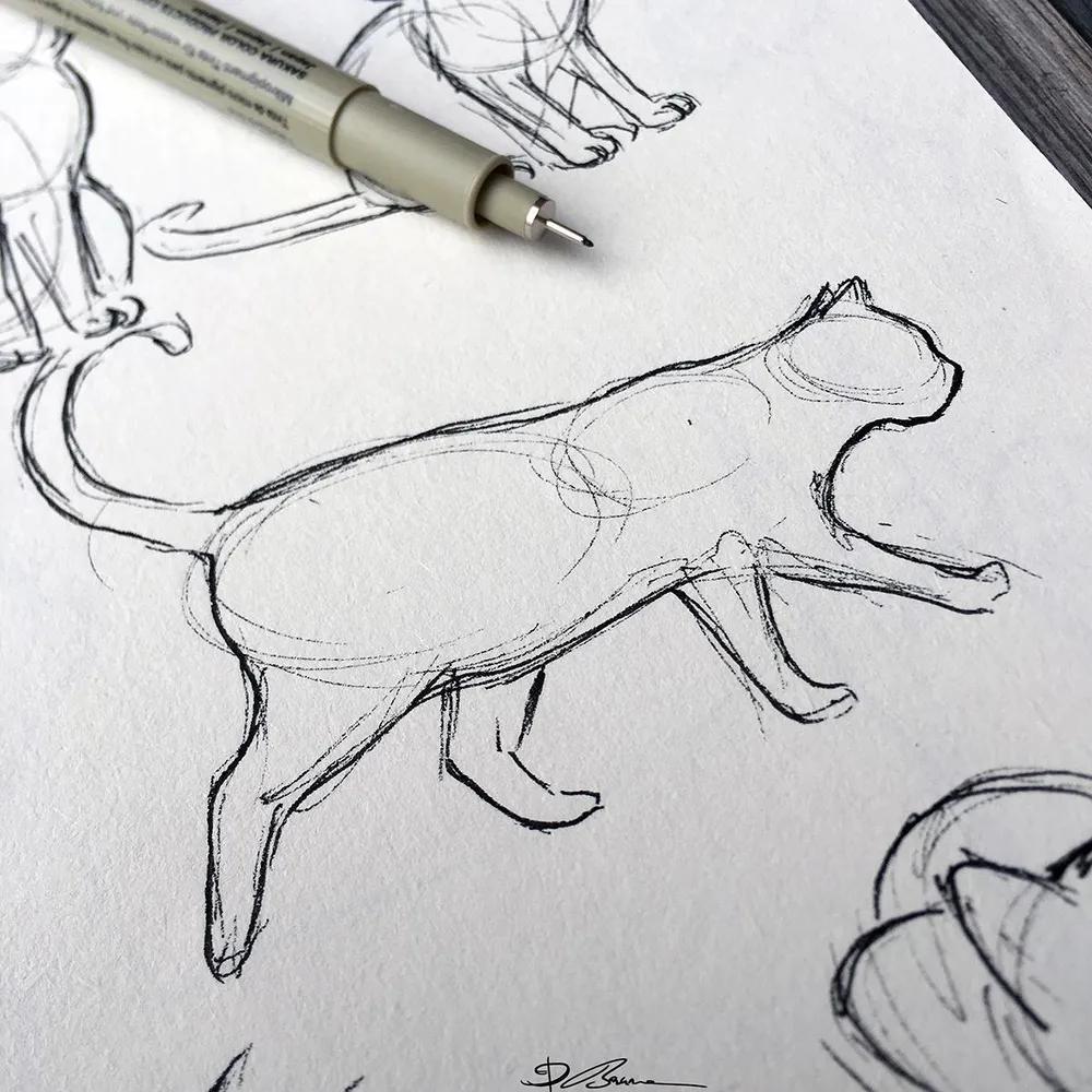 draw legs on a cat