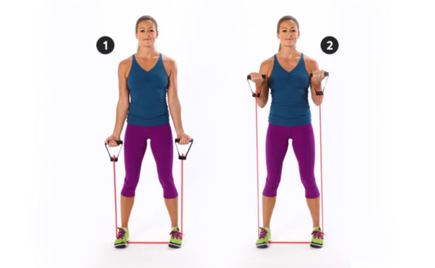 Bicep Curl with Resistance Bands