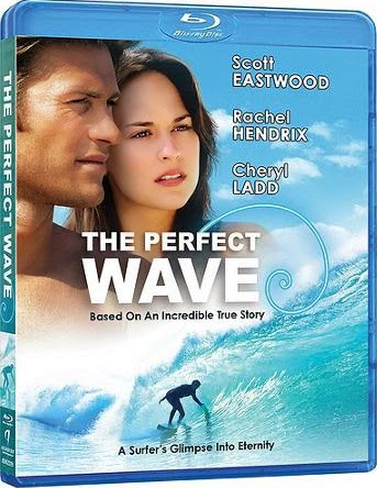 Baixar  The Perfect Wave   Legendado Download