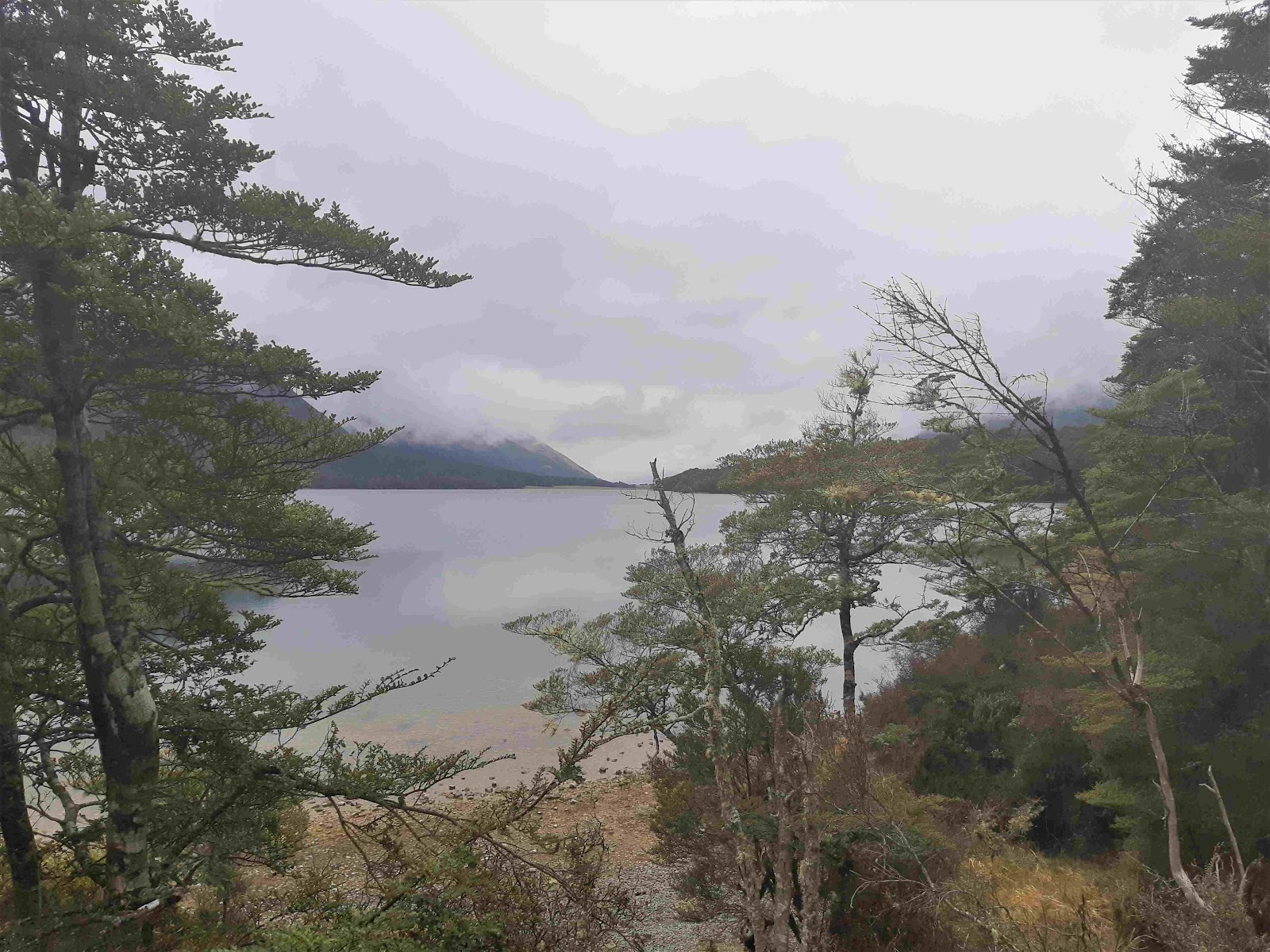 Lake Mavora in the mist.