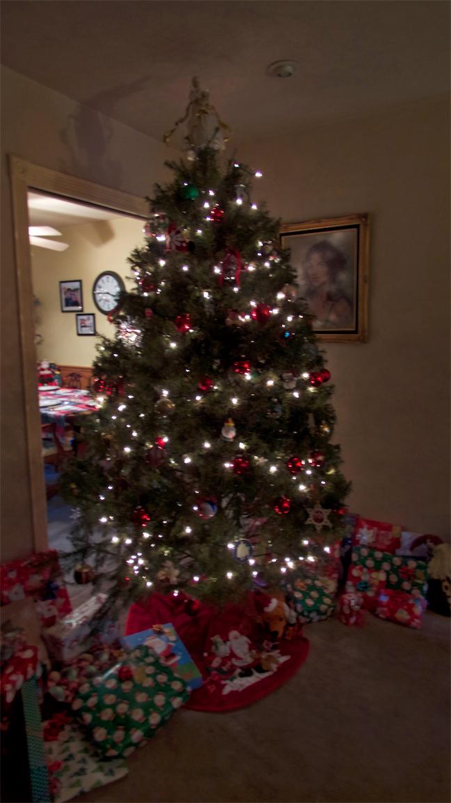 S Tree LR 2.jpg