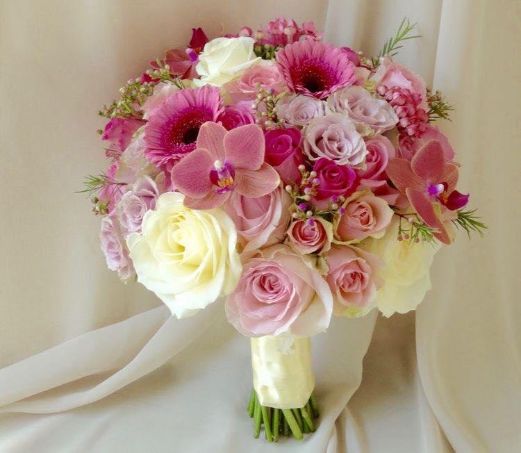 Ảnh có chứa cây, hoa, tường, trong nhà Mô tả được tạo tự động