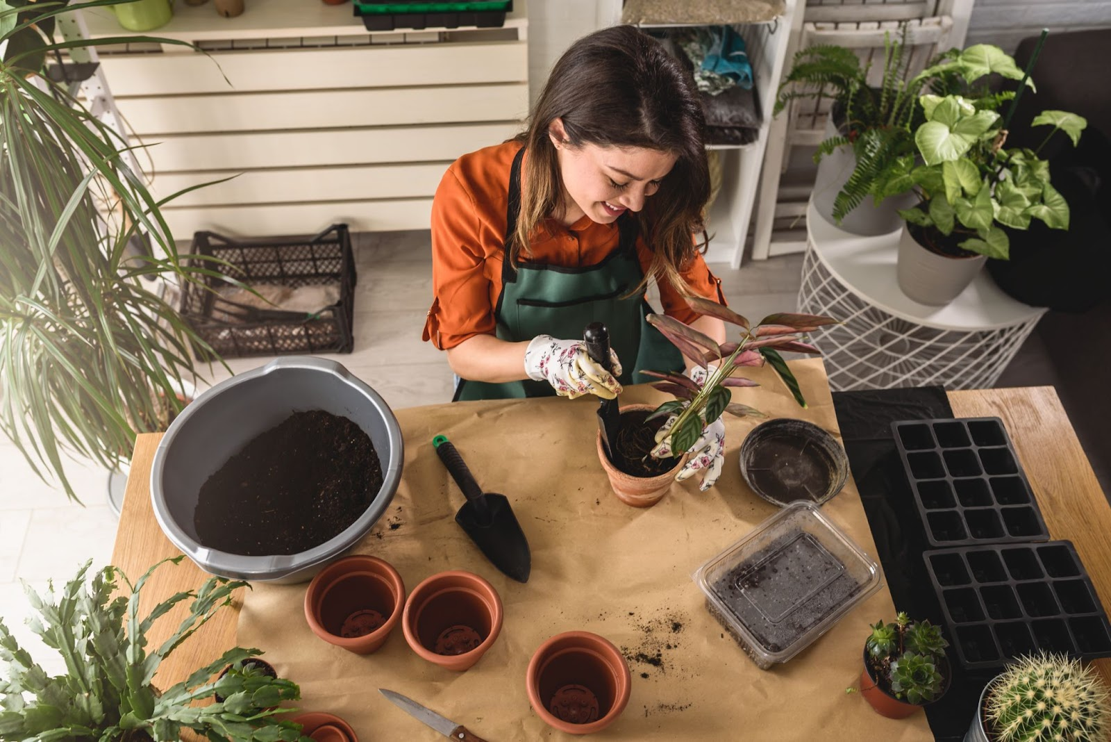 Image of woman practicing self care by indoor gardening.