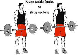 Musculation shrugs ou haussements d'épaules