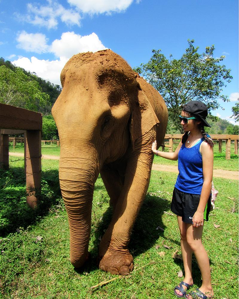 Stefanie patting an elephant.