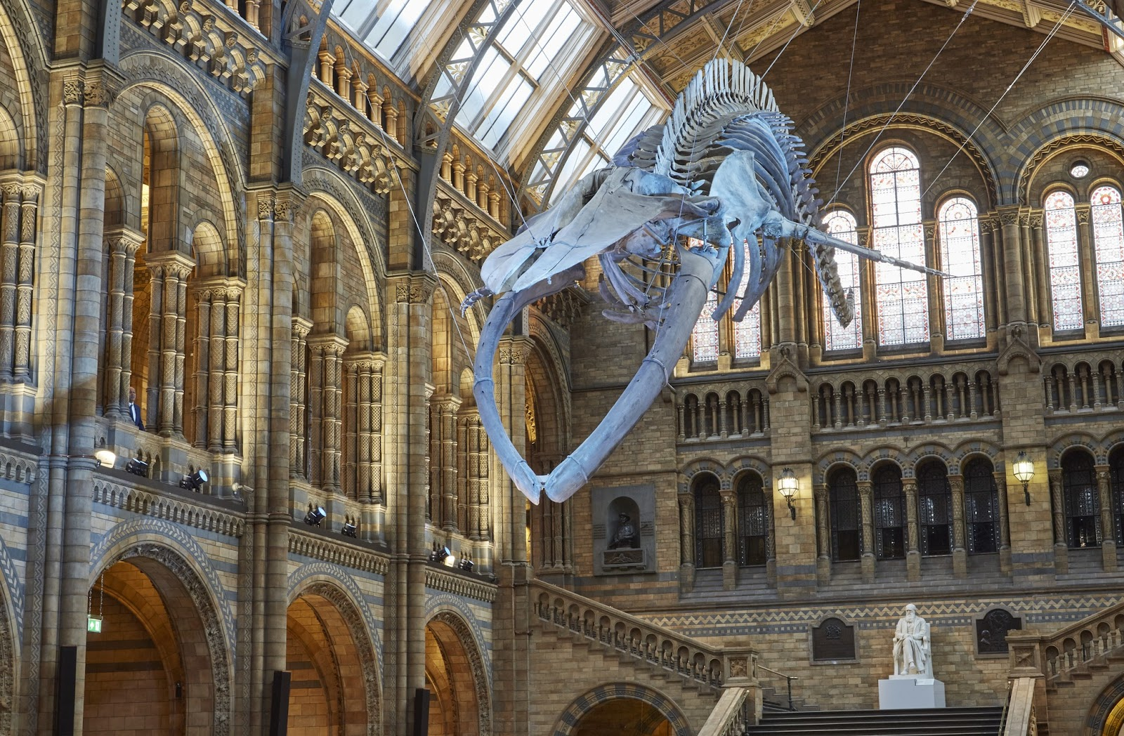 Natural History Museum Collection List