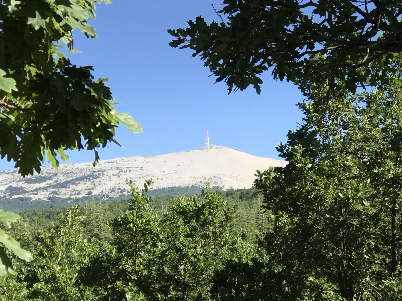 Mont Ventoux radio tower through trees