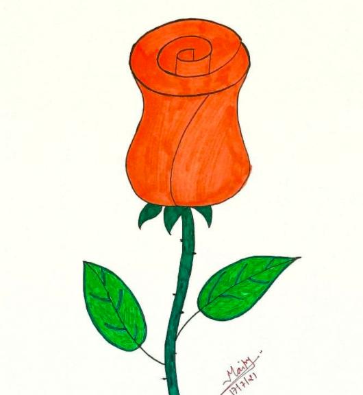 simple rose drawing