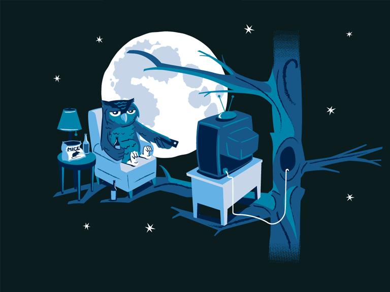 Image result for Developer cú đêm