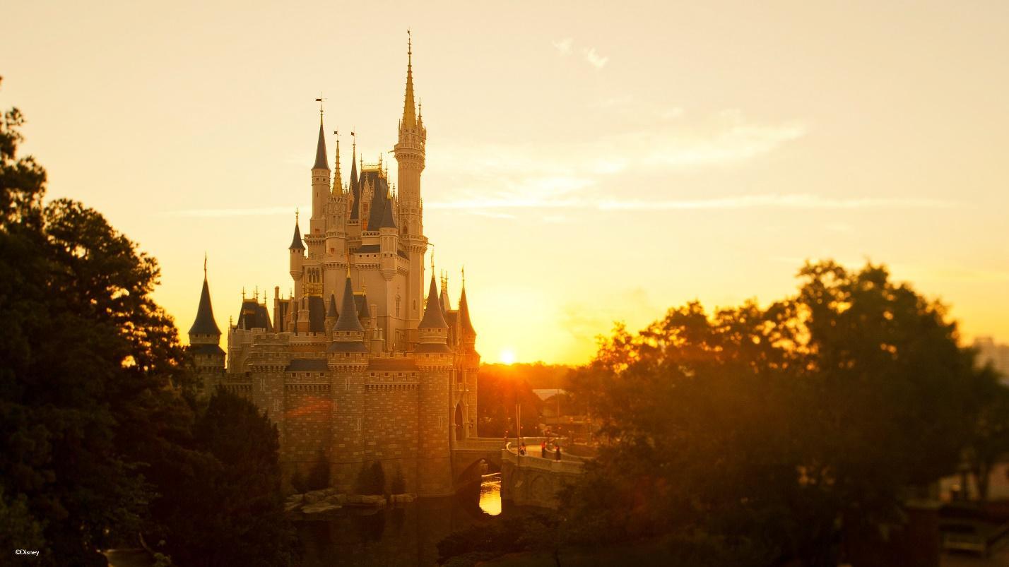 beautiful yellow sunset at Disney World