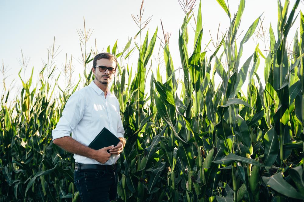 Toda a gestão da propriedade rural pode ser realizada a partir de um dispositivo conectado à internet, como o tablet. (Fonte: Shutterstock)