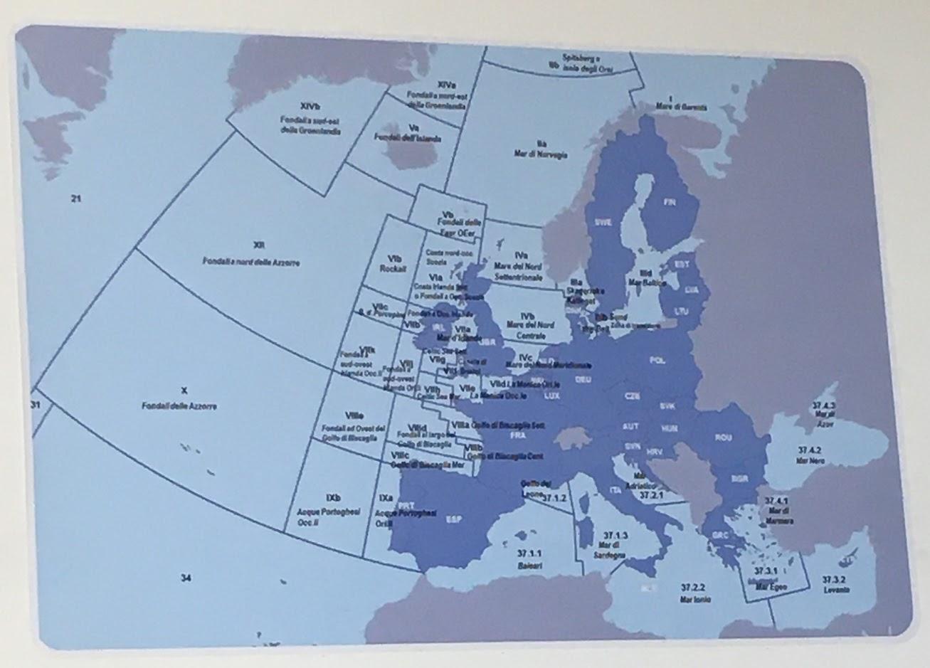 Cartina FAO contro la sovrapesca