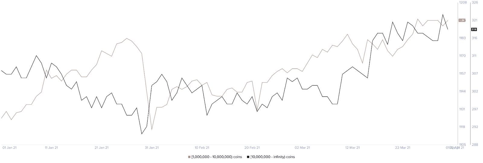 Le nombre de baleines de Ripple (XRP) explose en 2021