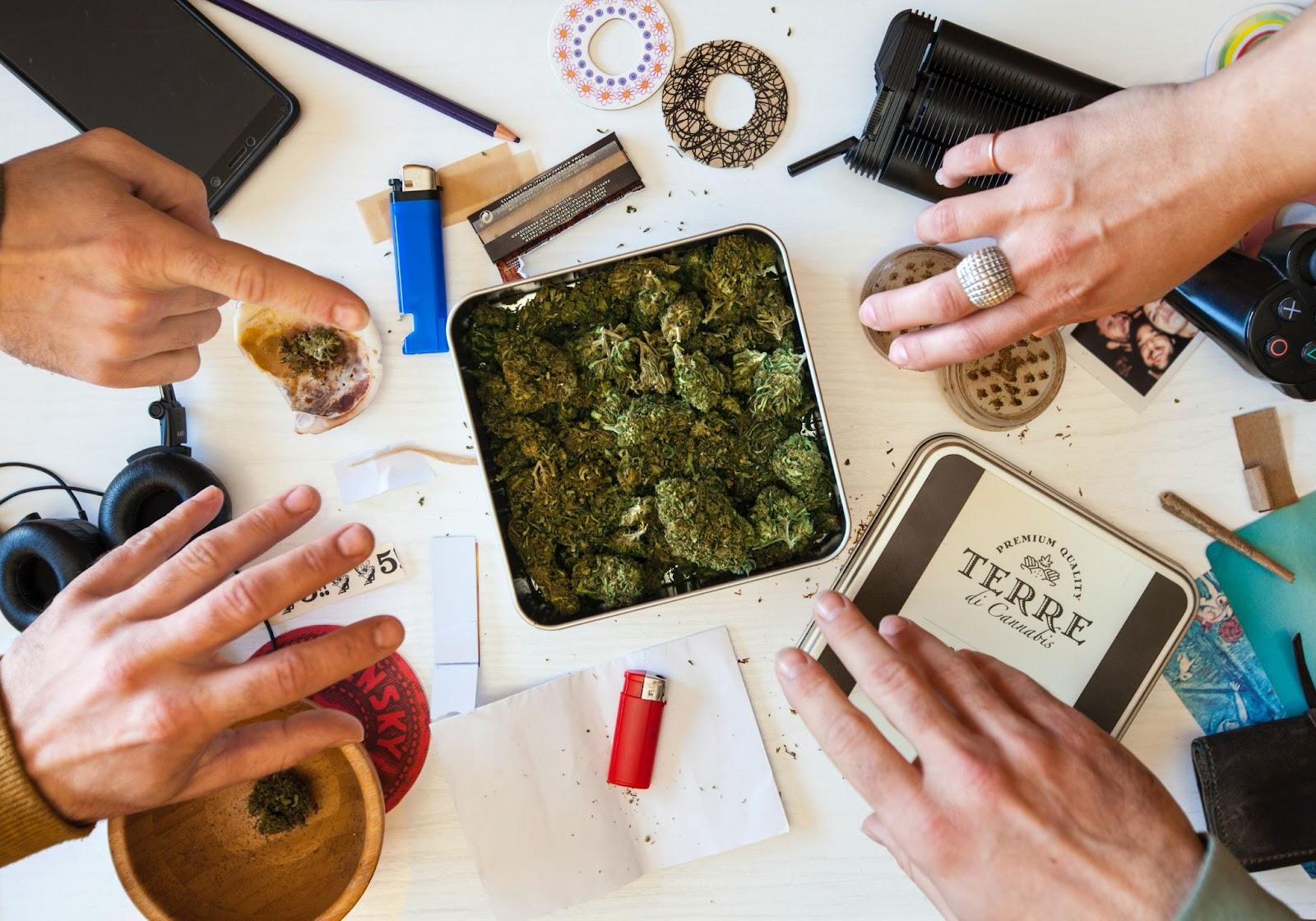 top cannabis brands