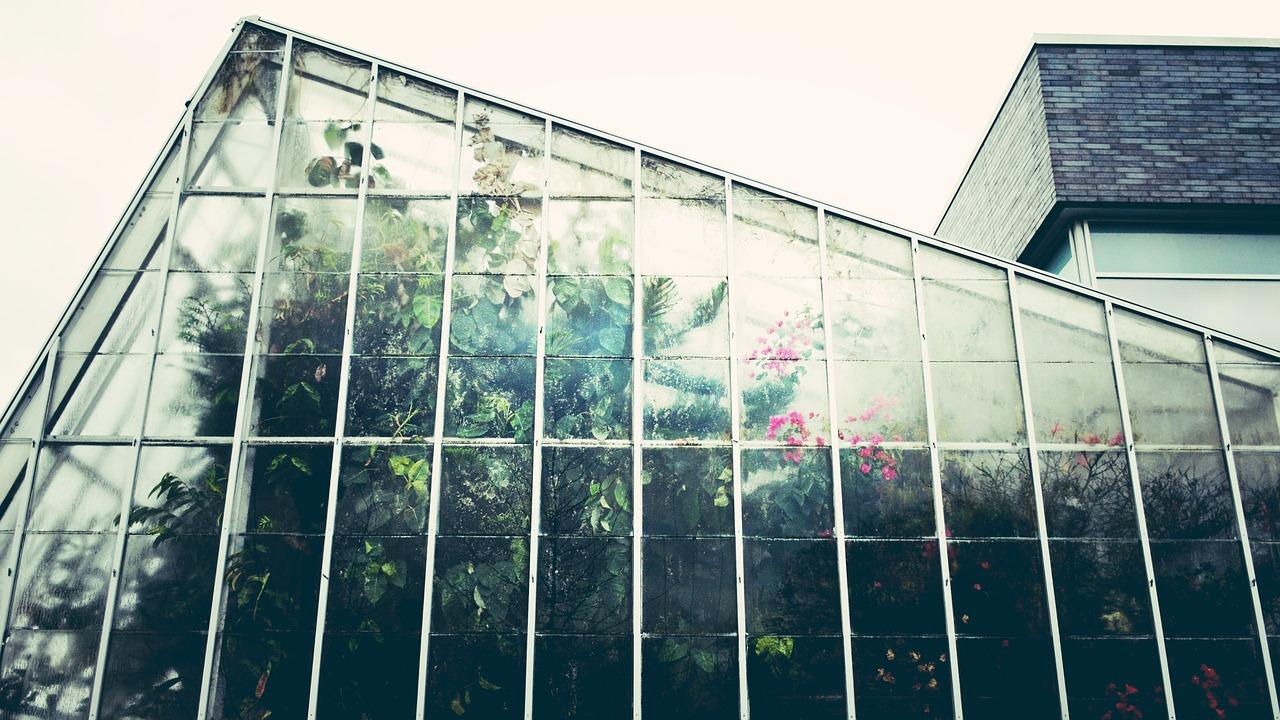 greenhouse-1246536_1280.jpg
