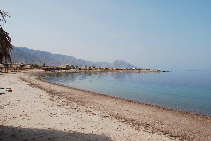 The Yogi Next to You - Irin Carmon: Sinai Desert