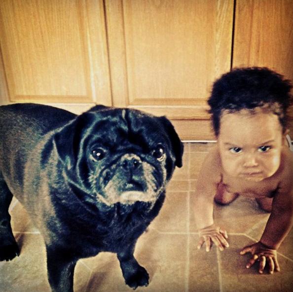 Tiernas fotografías de niños y perros