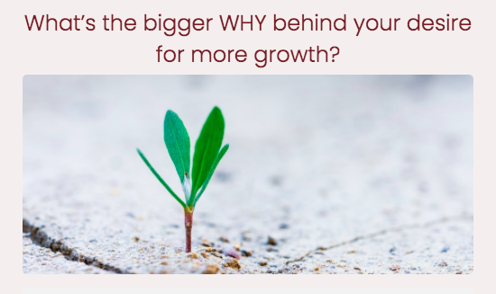 quiz question for what's the bigger why behind your desire for more growth