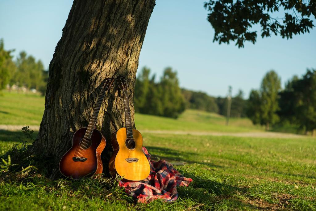 mua đàn guitar ở bình dương