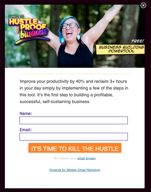 Screenshot of opt-in form for 5 ways to hustle proof your business