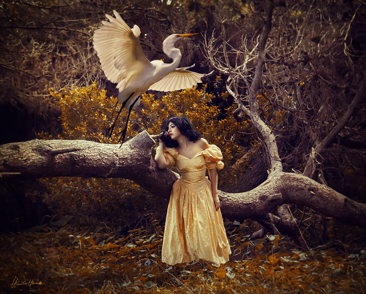 The Heron Maiden -Limited Edition Print