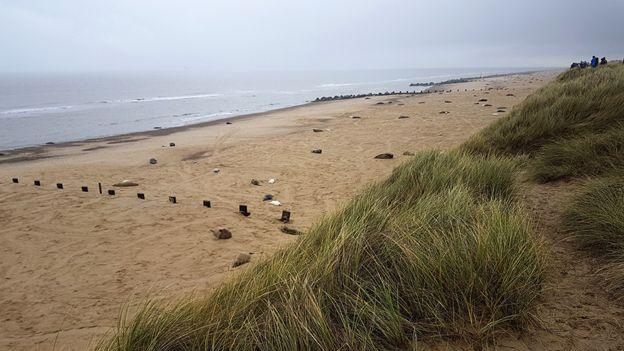 Пляжи восточного побережья Англии