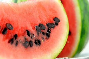 Risks of watermelon rind for cats