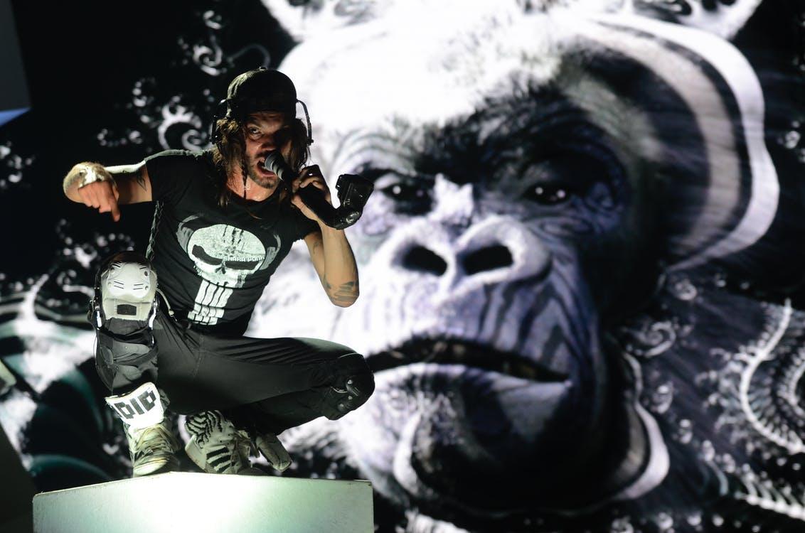 Gratis stockfoto met aap, concert, eenkleurig