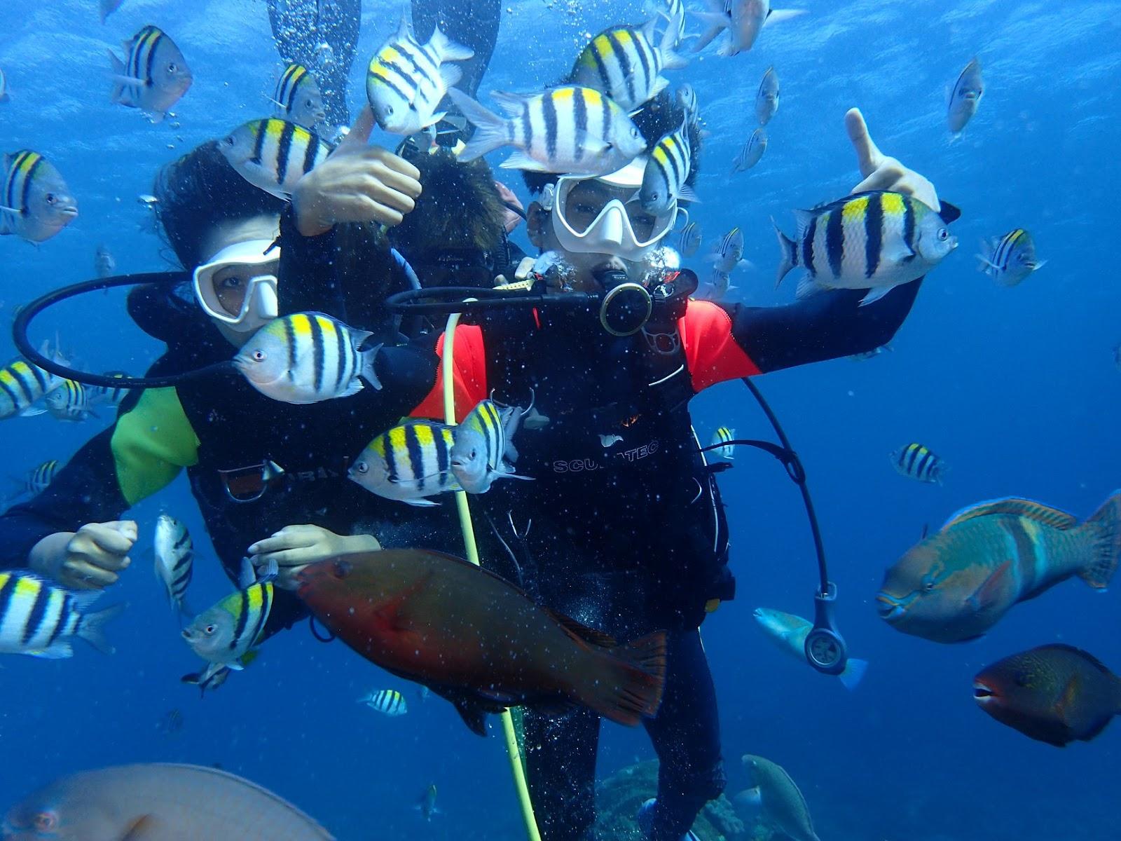 專業潛水教練帶你玩綠島