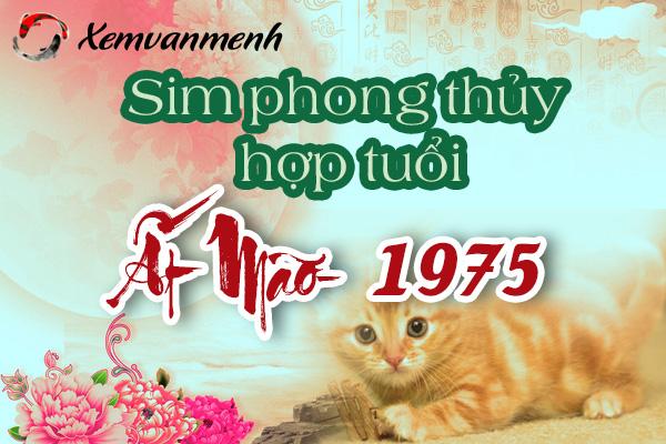 xem-sim-phong-thuy-hop-tuoi-at-mao-1975