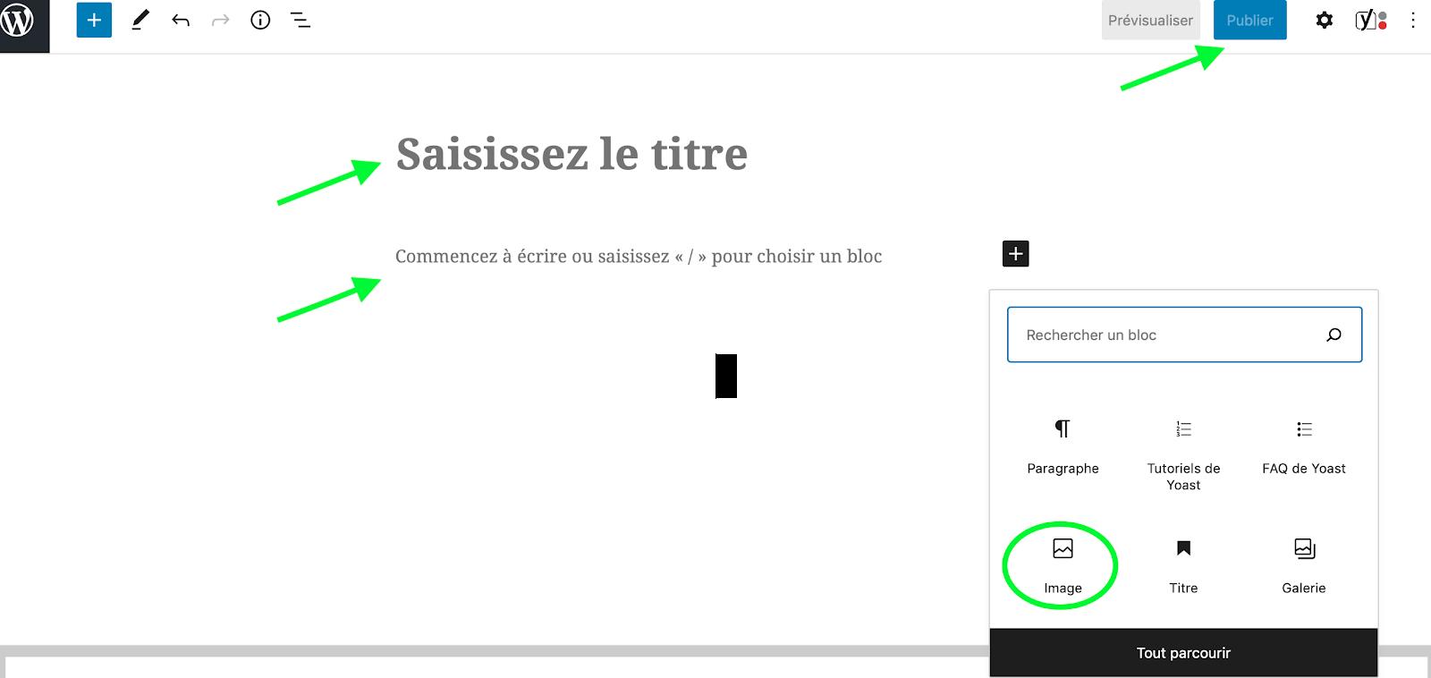 Wordpress-saisir-texte
